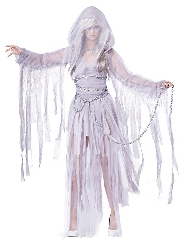California Costumes Women's Haunting Beauty Ghost Spirit Costume, Gray, (Spirit Com Costumes)
