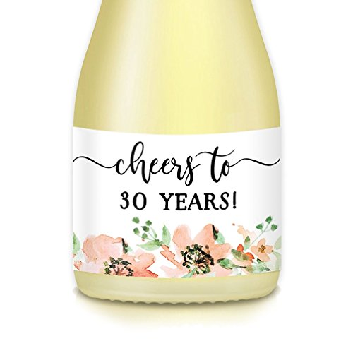 Woman's 30th Birthday Party Gift Ideas - Wife, Girlfriend, Sister, Female Coworker Mini Wine Bottle Labels, Cheers to 30 YEARS! Mini Champagne Decal Decorations, Set of 20 Stickers, 3.5