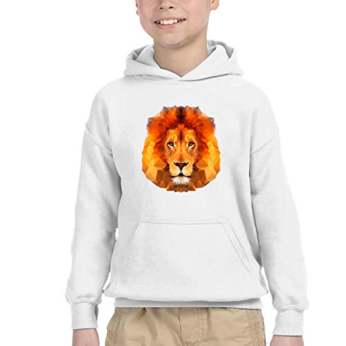 Clarissa Bertha Polygon Lion Face Boys' Girls' Long Sleeve Hoodies Pullover -