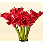 Meide-Group-USA-25-Large-Handmade-Real-Touch-Latex-Calla-Lilly-Artificial-Spring-Flowers-for-Arrangements-Bouquets-Weddings-and-centerpieces-Pack-of-5-Bright-Red