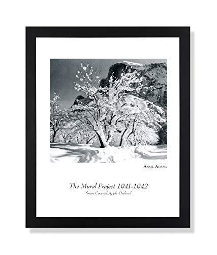 Solid Wood Black Framed Ansel Adams B/W Photo Apple Orchard Pictures Art Print