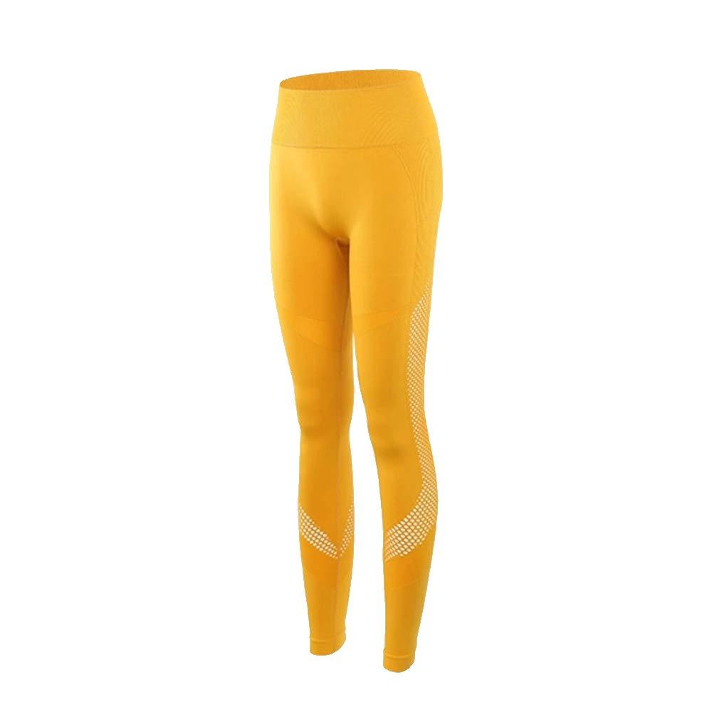 HABIT- The Meshy High Waist Yoga Dance Leggings for Girls and Women's Yellow by HABIT