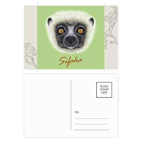 White Fluffy Sifaka Monkey Animal Flower Postcard Set Thanks Card Mailing Side 20pcs