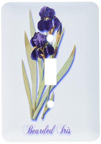 (3dRose lsp_171212_1 Bearded Iris, Botanical Print of Dark Purple Flowers with Orange Light Switch)