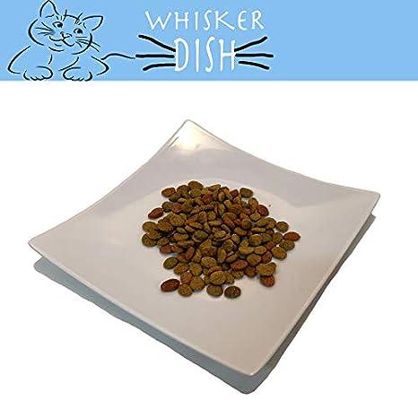 Amazon.com: Whisker - Fuente de comida para gatos y mascotas ...