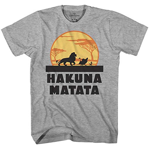 (Disney Lion King Hakuna Matata Pumbaa Timon Africa Simba Mufasa Disneyland World Tee Adult Graphic T-Shirt Apparel (Heather Grey,)