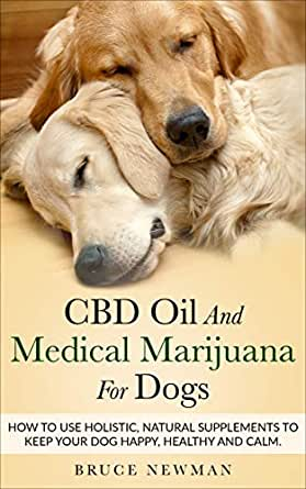 How To Use CBD For Pets