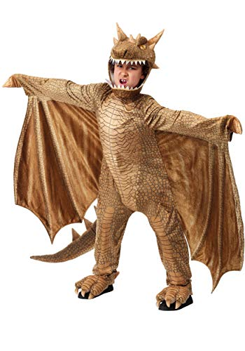 Child's Fantasy Dragon Costume Medium]()