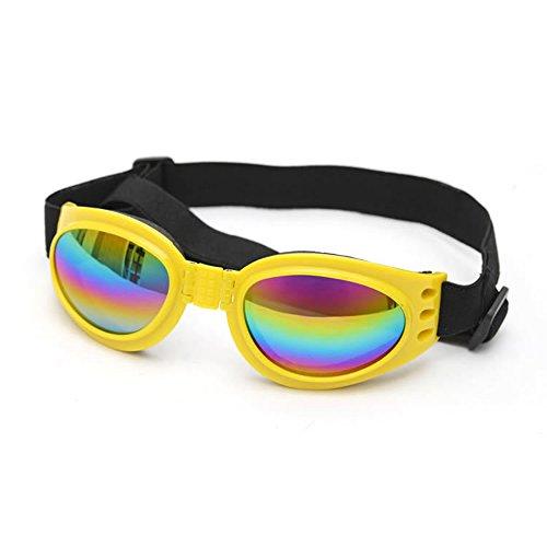 1643e6d95a BIAOZH Gafas de sol perro, gafas de sol doradas, gafas de sol grandes para