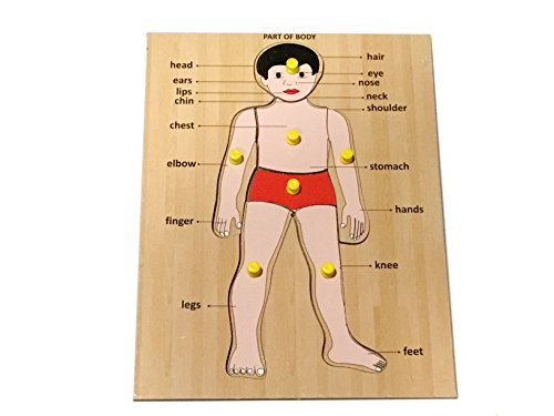 Body Puzzle Wood (Mojopanda Handcrafted Human Body Parts Peg Puzzle Picture Learning Board for Children Educational Toy)