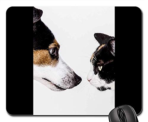 Gaming Mouse Pads,Mouse mat,Cats Dog Animal Dogs Animals Pet Nature Doggy