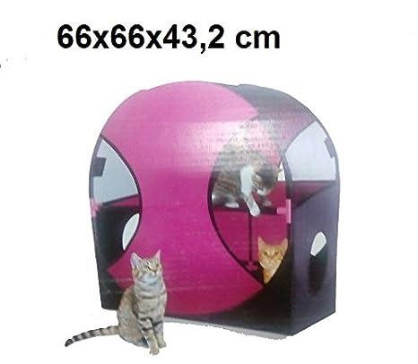 Juegos Cubo Gatos Casa Caseta Rueda túnel Divertimento Saliscendi entrada salida: Amazon.es: Productos para mascotas