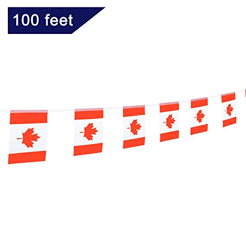 TSMD Canada Flag, 100 Feet Canadian Flag National Country Flags Banner,Party Decorations Supplies for Grand Opening,Olympics,Bar,School Sports Events,International Festival Events Celebration