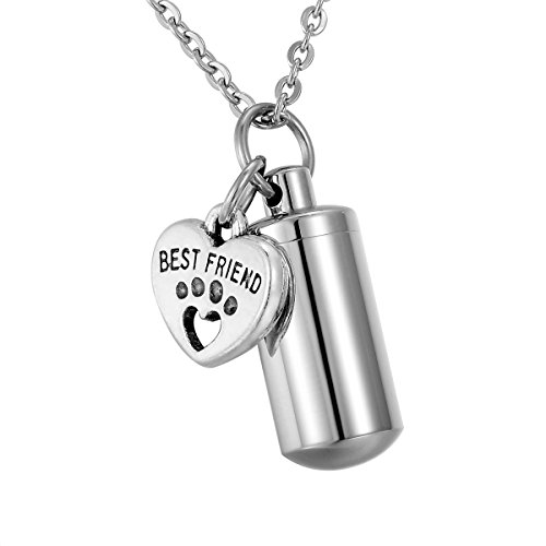 HooAMI Best Friend Pet Paw Heart Charm & Cylinder Memorial Urn Necklace Stainless Steel Cremation ()