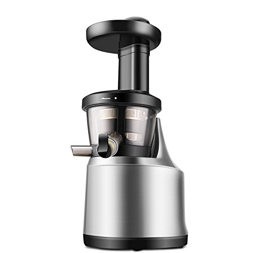 Flexzion Cold Press Juicer Machine - Masticating Juicer Slow Juice Extractor Maker Electric Juicing Vertical Stand for Fruit, Vegetable, Greens, Wheat Grass & More with Big Cup & Juicing Bowl (Juicer Pressed Cold)