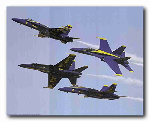 ary Aircraft Jet Aviation Airplane Wall Decor Art Print Poster (16x20) ()