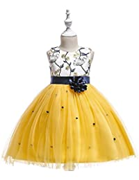 Amazon yellows special occasion dresses clothing shoes 2 9 years elegant flower girl dress party pageant dresses mightylinksfo
