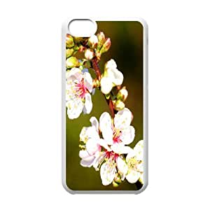 Apple Flowers Twig IPhone 5C Cases, Iphone 5c Cases Fashionable Anti Fall Okaycosama - White