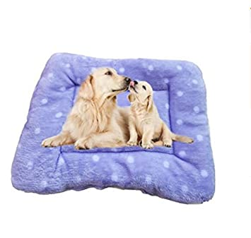 Lizes Alfombra de Cama Caliente para Mascotas Súper Suave pequeño Perro Mascota Manta Cachorro Gato cojín esteras (Puntos de Color púrpura): Amazon.es: ...