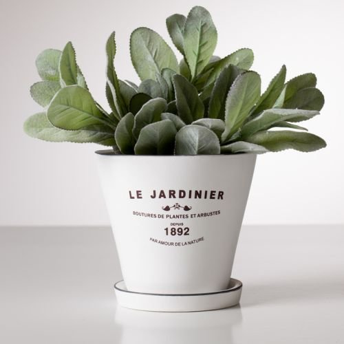 Torre & Tagus 902414B Jardinier Round 5-Inch Planter with Saucer, (French Planter)