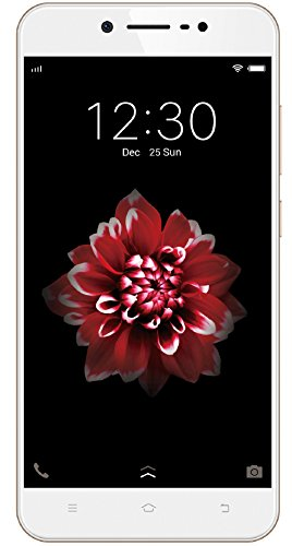 Vivo Y66 with Offers – Extra 500 Off on Exchange