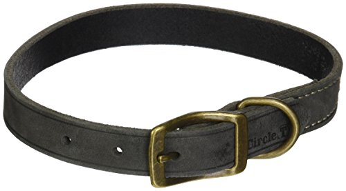 Coastal Pet Products Circle T Rustic Leather Town Dog Collar, 3/4