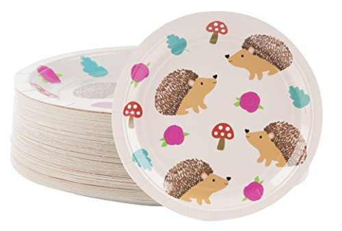 Disposable Plates - 80-Count Paper Plates, Hedgehog Party Supplies for Appetizer, Lunch, Dinner, and Dessert, Kids Birthdays, 9 x 9 inches