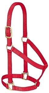 Weaver Leather Basic Non-Adjustable Nylon Horse Halter