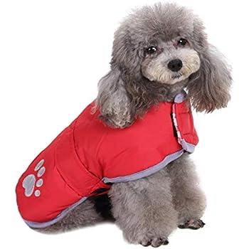 Amazon.com : Queenmore Cold Weather Dog Coats Loft