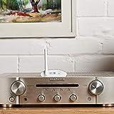 Auris Blume HD Long Range Bluetooth 5.0 Music