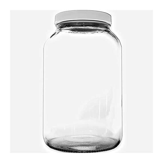 1 Gallon Glass Jar - Kombucha 1 1 Gallon Clear Glass Jar Great for Kombucha