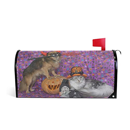 ALAZA Halloween Pumpkin Cat and Chihuahua Mailbox Cover Standard Size-18