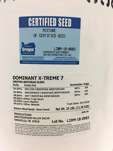 Dominant X-Treme 7 Creeping Bentgrass Blend 25 lb Pail by Seed Research of Oregon (Image #1)
