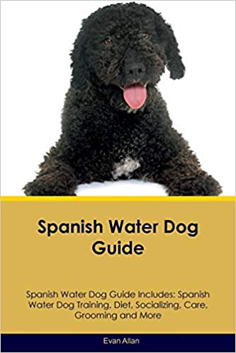Do you need more water in spanish