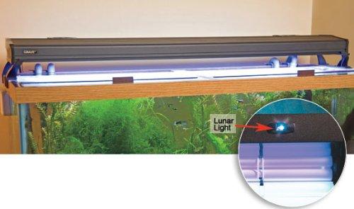 Coralife Energy Savers  Lunar Aqualight Pc Strip, 24-Inch, 2 x 65w, ACL53402 (24 Lunar Light Strip)