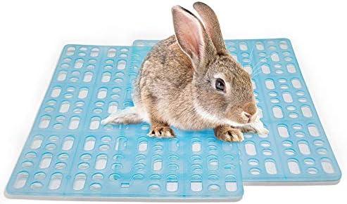 MeterMall Cojines de plástico para Mascotas, Conejo, Conejo ...