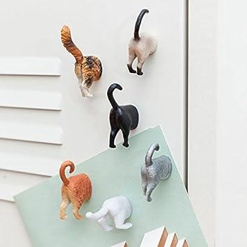 Gato hintern Frigorífico Imanes en Juego de 6 - Gatos hintern magnético imanes de gatos Po trasero.: Amazon.es: Jardín