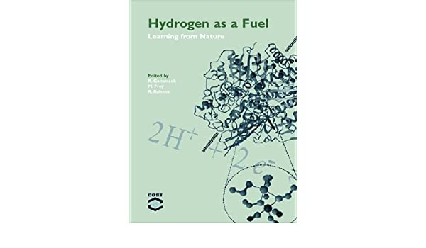 Hydrogen as a Fuel: Learning from Nature