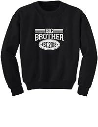 TeeStars - Gift Idea for Big Brother - Est 2018 Boys Youth Kids Sweatshirt