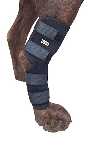 Labra Supportive Dog Canine Rear Leg Hock Joint Wrap Protects Wounds as They Heal Compression Brace Heals and Prevents Injuries and Sprains Helps Arthritis