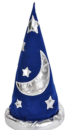 Adult Wizard Hat Standard -