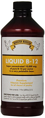 Rooster Booster B-12 Liquid, 16-Ounce