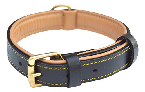Soft Touch Collars Black Leather Padded Dog Collar, Size Medium, 20