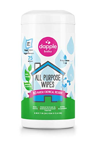 Dapple Toy and Surface Wipes - 75 Ct, Pack of 2