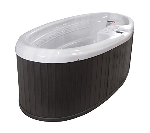QCA Spas Model 0H SM Sirius 2-Person Hot Tub Oval