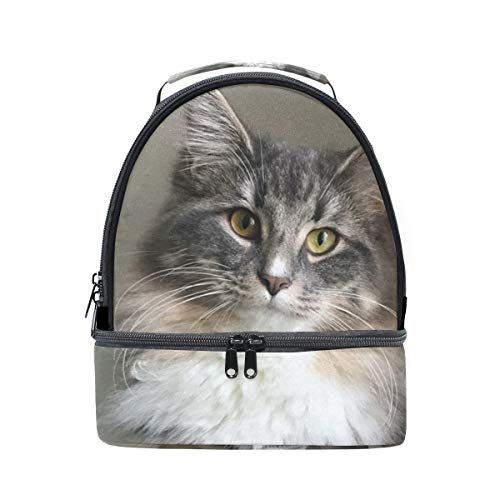 Insulated Lunch Bag Case Two Compartments with Shoulder Strap Norwegian Forest Kitten
