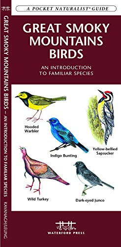 (Great Smoky Mountains Birds: An Introduction to Familiar Species (Wildlife and Nature Identification))