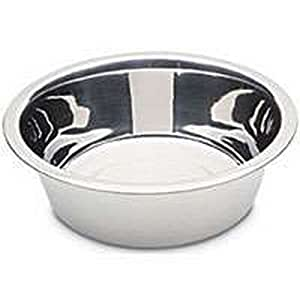 Amazon.com : Stainless Steel Bowl : Pet Supplies