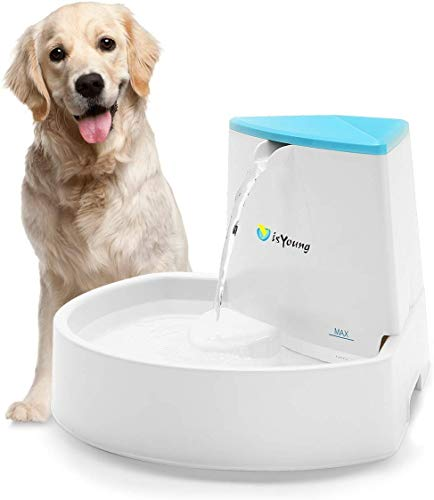 isYoung Dog Fountain, 84oz/2.5L Pet Fountain Automatic Water...