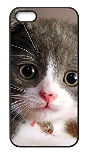iPhone 5,5s Hard Cover Frisky Cat - Phone Back Case